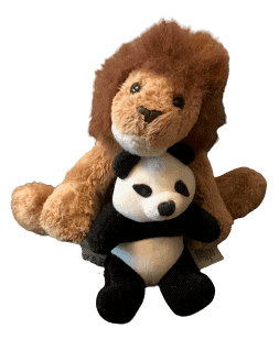 A Lion and a Panda